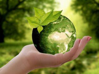 recycler cartouche carafe filtrante